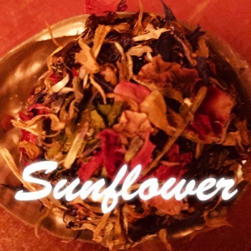 Sunflower 500x500 - Sunflower