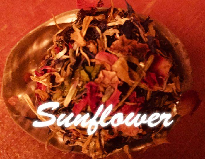 Sunflower 700x543 - Sunflower